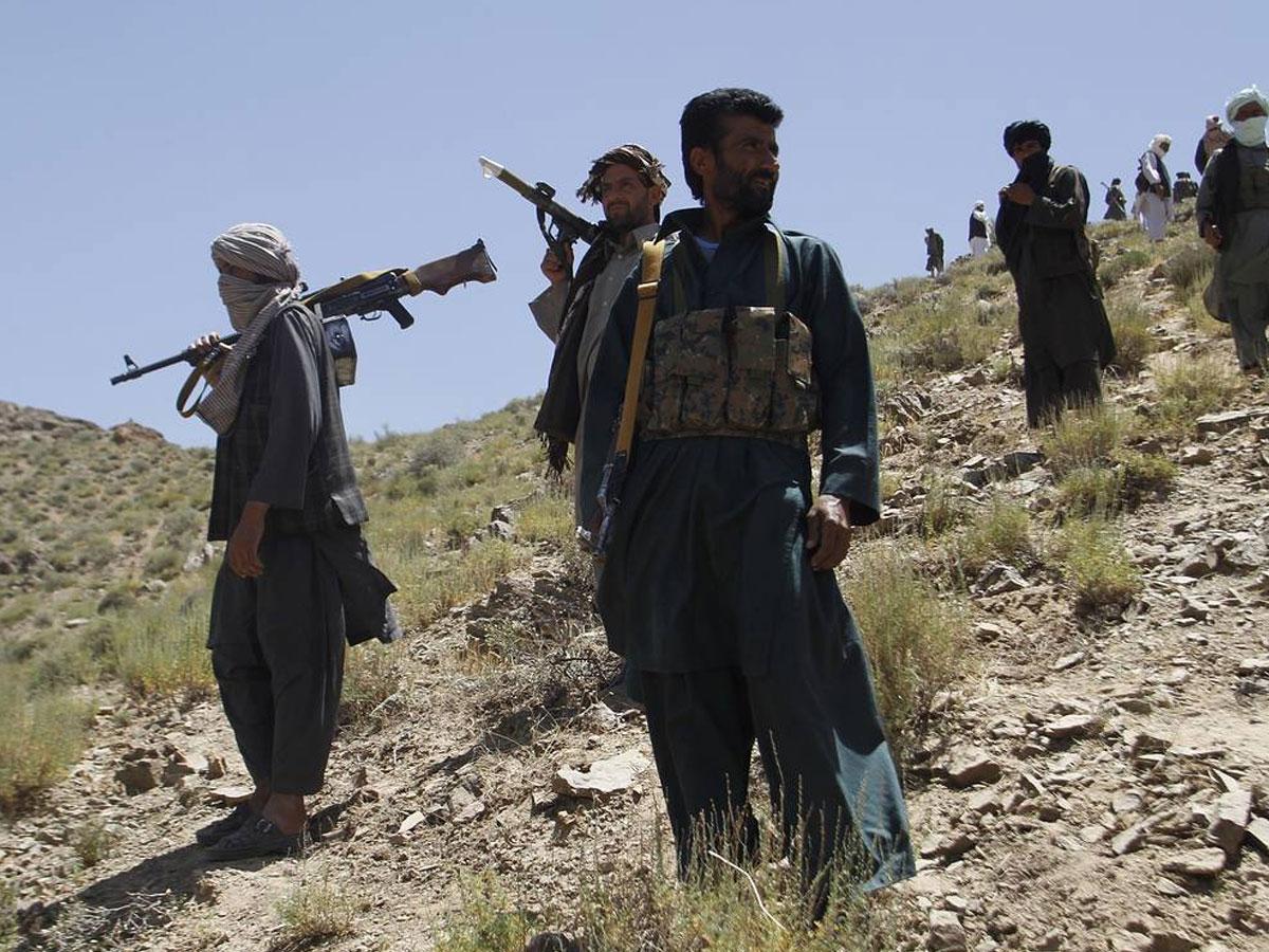 Эксперт оценил «успехи» талибов вборьбе снаркотрафиком
