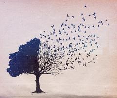 О неодинаковых предсмертных состояниях разных людей перед смертью, зависящих от многих факторов